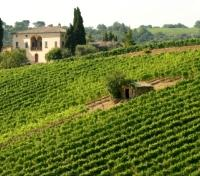 Tuscany Highlights Tours 2018 - 2019 -  Montalcino